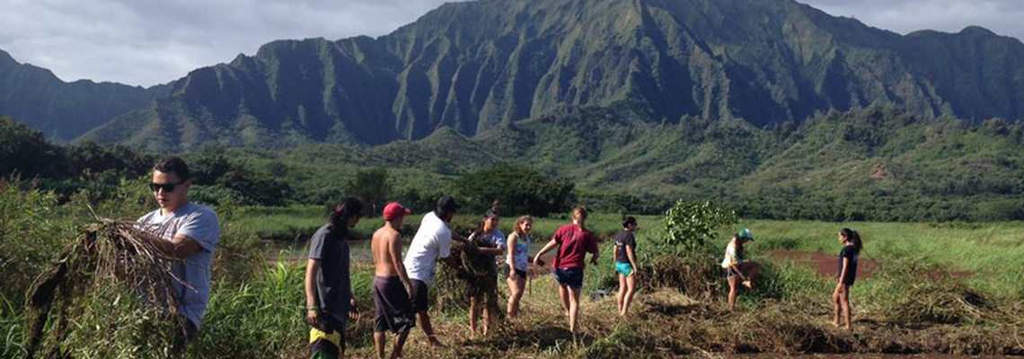 Students helping to malama aina, take care of the land