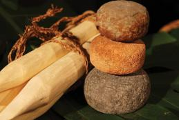 Stones and wooden stakes used for ʻulu maika